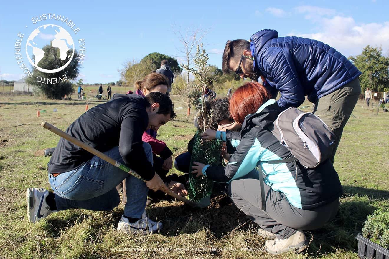 Reforestación | Evento de Team Building y RSC